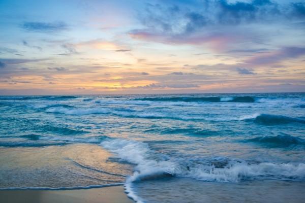 Las olas del mar formando espuma en la orilla