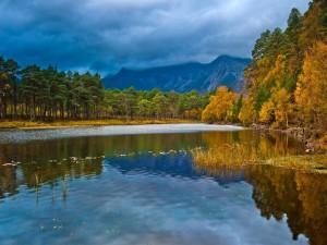 Postal: Árboles con los colores del otoño junto al lago