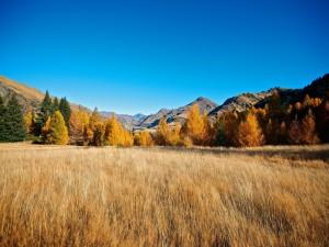 Postal: Otoño en las montañas