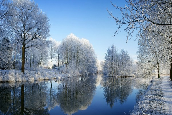 Árboles cubiertos de nieve reflejados en el río