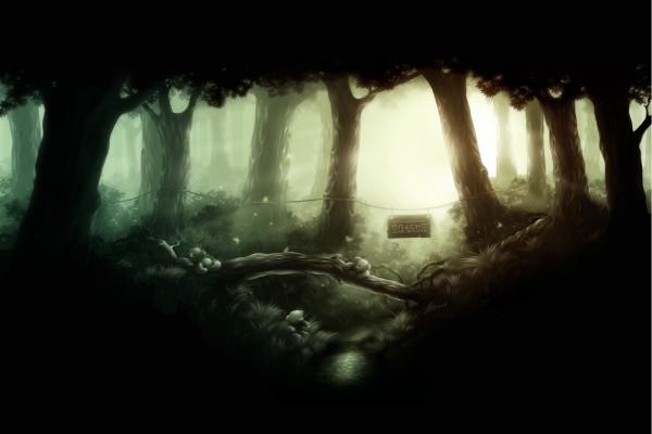 Ositos de peluche en el bosque