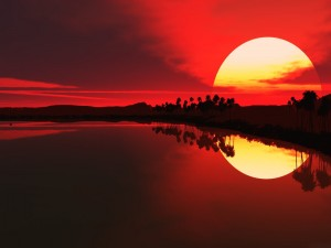El sol del atardecer y las palmeras reflejadas en el agua