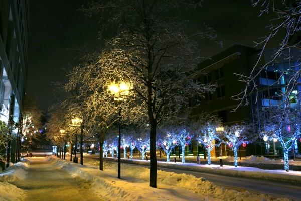 Nieve en la noche de la ciudad