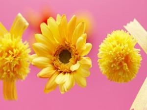 Flores amarillas de tela