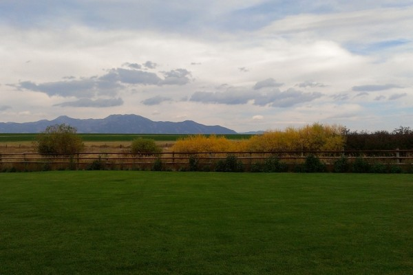 Hermosa tarde en el campo