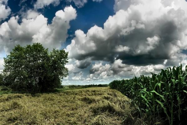 Principio de una tormenta sobre un campo