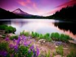 Un bonito lago al atardecer