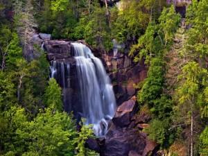 Bella cascada entre grandes rocas y árboles