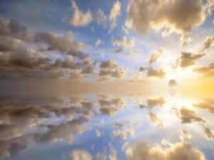 Postal: Un árbol y la inmensidad del cielo