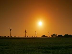 El sol sobre los molinos eólicos