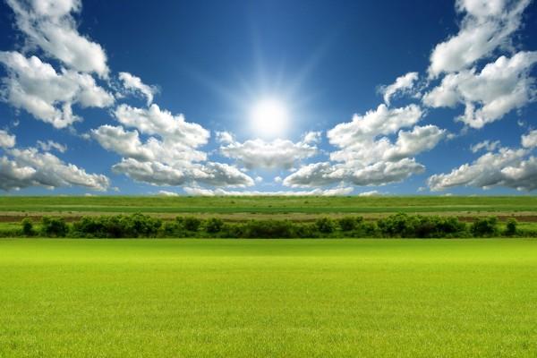 Brillante sol sobre una verde explanada
