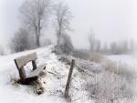 Un banco de madera en un lugar cubierto de nieve