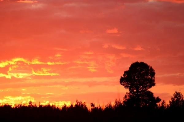 Los colores del atardecer en el cielo