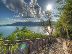 Camino junto al lago entre montañas y árboles