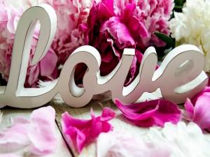 Postal: Te regalo una bellas flores y mi amor