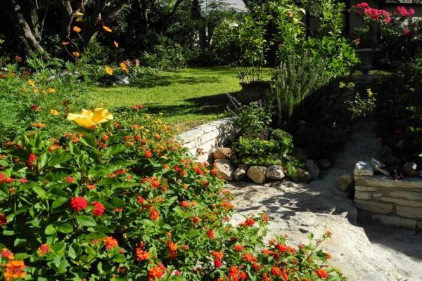 Jardín con hermosas verbenas y arbustos