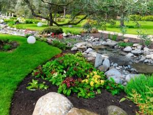 Postal: Magnífico parque con un arroyito, piedras, primulas y arbustos