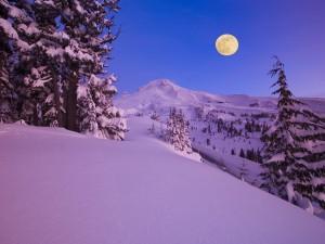 Una preciosa luna llena sobre un paraje natural nevado