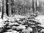 Piedras en el río cubiertas de nieve