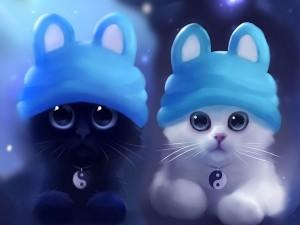 Postal: Tiernos gatitos con un collar del yin y yang