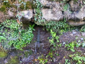 Postal: Un chorro de agua fluye entre las rocas