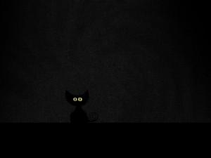 Postal: Un gatito negro en la oscuridad
