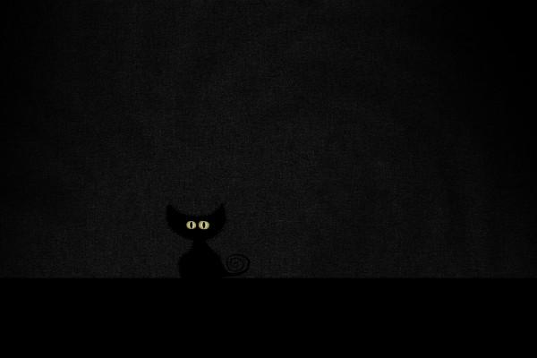 Un gatito negro en la oscuridad
