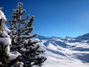 Postal: Telesilla en una estación de esquí cubierta de nieve