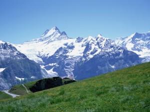 Admirando las grandes montañas desde el prado verde