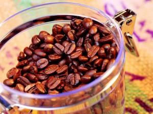 Granos tostados de café en un tarro transparente