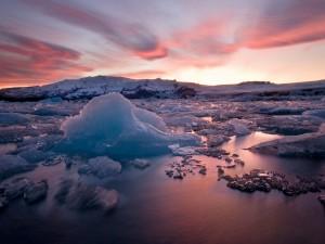 Hielo en las frías aguas