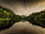 Árboles reflejados en las tranquilas aguas del lago