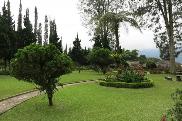 Árboles en un jardín de Pura Ulun Danu Bratan (Bali)