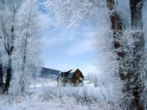 Casa en un paraje cubierto de nieve