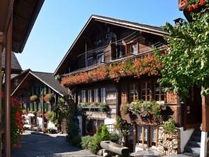 Bonitas casas con de flores y plantas en las fachadas