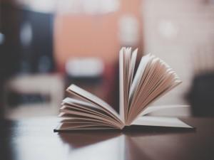 Las hojas de un libro abierto