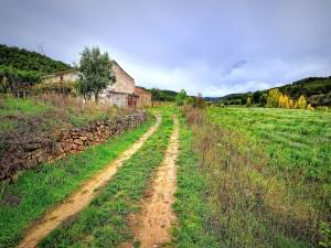 Camino rural hasta la casa