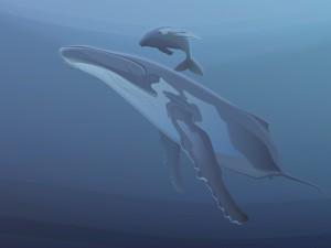 Ballena jorobada nadando con su cría