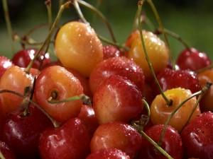 Unas cerezas recién lavadas