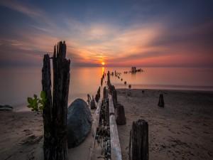 Postal: Mar en calma a la salida del sol