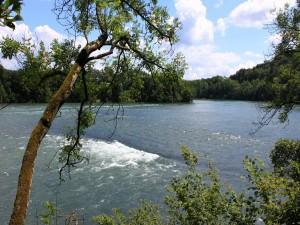 Árboles en las dos orillas del río