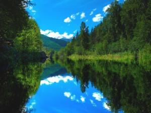 Cielo y árboles reflejados en las limpias aguas del río