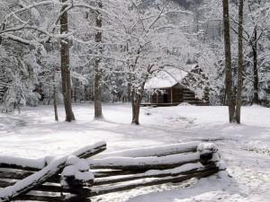 Postal: Una cabaña en el bosque nevado