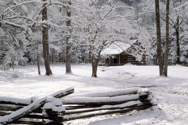 Una cabaña en el bosque nevado