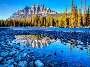Piedras en un  río de montaña