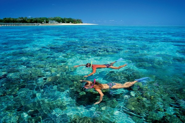 Pareja practicando snorkel en un arrecife de coral