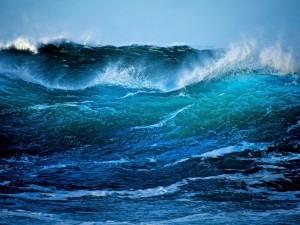 Observando la bravura de las olas en el mar