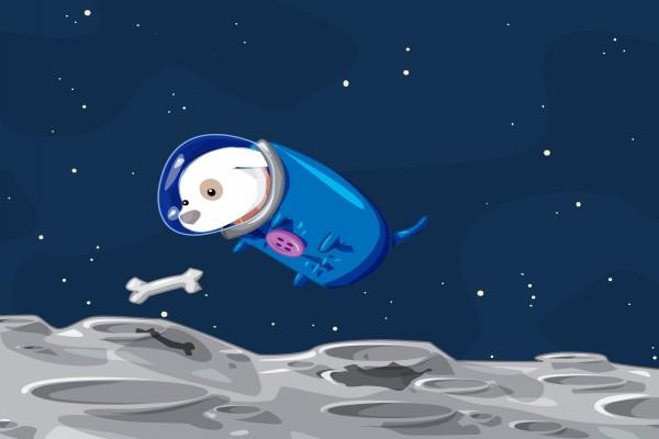 Un perro en la luna