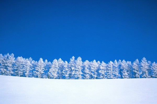Paisaje nevado y el contraste de un bonito cielo azul