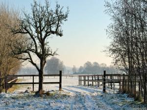 Postal: Nieve en la entrada del rancho